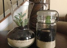 Even when it's cold or gloomy out, you can garden under glass. And when the kids say they're bored, give them some plants and soil, and tell them to grow something! Click through for easy instructions.