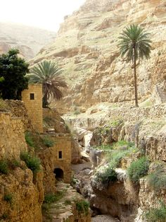 Amazing Wadi Qelt Valley - Jericho, West Bank