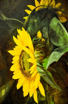 Charles Ethan Porter - Sunflowers, 1880s at Baltimore Museum of Art Baltimore MD   Flickr - Photo Sharing!