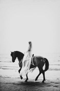 For The Love Of Grace | Wedding Dreams | Horse | French Lace x