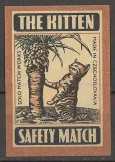 The Kitten cat Vintage Match Box Label made in CZECH Old Matchbox paper label