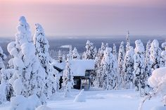 Wintercottage_Isosyöte_Finland.  Cabins and Activities in Saariselkä http://www.saariselka.com
