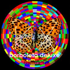As Borboletas são o reflexo do interior de um ser em expansão...   Sua existência está ligada à exteriorização das essências pelas corres...