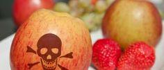 Attenzione Ai 10 Alimenti Che Possono Diventare Tossici