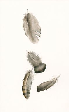 watercolor painting- nature art, feather art,Turkey Feathers No. 2 Archival print. $35,00, via Etsy.