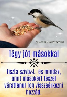 Tégy jót másokkal ~ Fényörvény Motto, Karma, My Friend, Life Quotes, Spirituality, Thoughts, Motivation, Voldemort, Inspiration