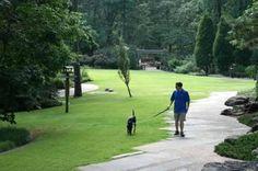 Garvan_Woodland_Gardens_sized