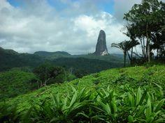 Peak in the jungle, Sao Tome & Principe islands, Africa [1024 x 768] By Filippo Aragone : EarthPorn