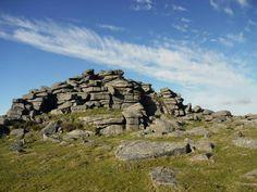 Unmistakably Dartmoor!
