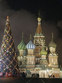 Image detail for -Photos: Christmas trees around the world | National & World News ...