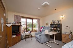 Island Care Penguin Penguin, Corner Desk, Island, Furniture, Home Decor, Corner Table, Decoration Home, Room Decor, Islands