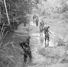 Air Cav On patrol ~ Vietnam War