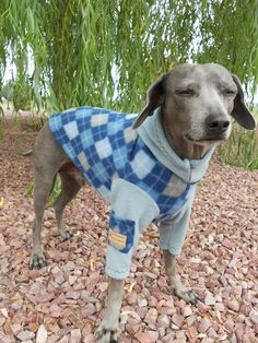 Sterling Blue Argyle Fleece Dog HoodieLARGE by hatz4brats on Etsy, $24.50