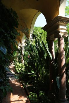 Villa Ephrussi de Rothschild, garden, seaside villa and garden, Cote d'Azur, France, August 2015, Agata Byrne garden travels
