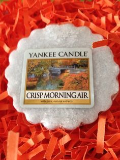 YANKEE CANDLE TART MELT CRISP MORNING AIR  **NEW #YankeeCandle