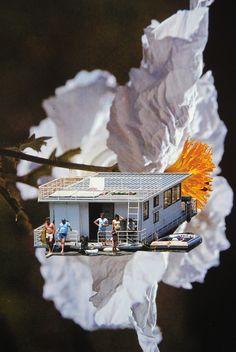 Surreal Summer, John Turck Collage
