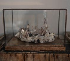 by TheDeadPheasant Handmade rustic walnut wood and soldered stained glass, geometric terrarium for display of oddities, curiosities, natural history, or geological specimen.