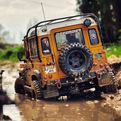 Land Rover in its natural environment