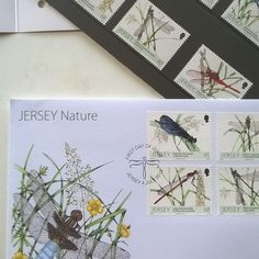 These are some #dragonfly & #damselfly #postage #stamps I did for #jersey #post a couple of years back (  www.jerseypost Co.uk) lovely job adored doing #naturalhistory #watercolors of these #jewel like #British #insects. And coz the #paintings are reduced by 400% all the mistakes get hidden! #bonus! #entomological #entomology #odonata #postage #watercolour #paint #drawing #stampcollecting #philatelist #uk #mail #winsorandnewton #ilovemyjob! by lizzie_harper_illustrator