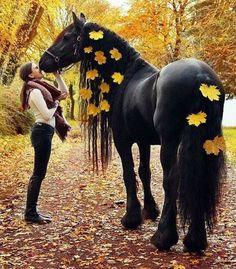 Black Horse 45