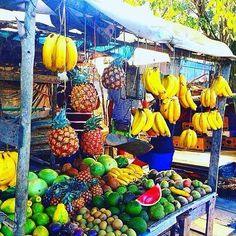 Which #fruit is your favourite? Amazing scene from Linstead Jamaica! #visitjamaica #homeofallright