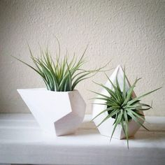 12 Elegant Ways To Bring Air Plants Into Your Home // These teardrop designs add a touch of contemporary to your mantle.