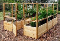 Outdoor Living Today 12 ft x 8 ft Hobby Greenhouse Outdoor Living Today 8 ft x 12 ft Cedar Raised Garden Bed with Deer Fence Kit Deer Fence, Front Yard Fence, Cedar Raised Garden Beds, Raised Beds, Compost, Home Vegetable Garden, Garden Boxes, Layout Design, Box Design