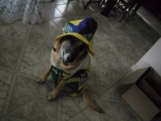 Não desanima Brasil! #worldcup2014 #brasil #vaiBrasil #copa2014