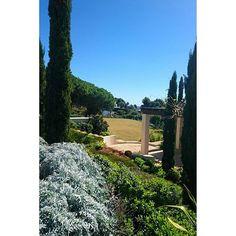 Waiting Springtime #gardening #jpdesigner #design #garden #fashion #Marbella #gardener #Luxury #luxurylife #Gardendesigner #mediterranean #cipres #GREEN #architecture #landscape #landscapelovers
