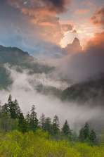Bill Lea - Nature Photography