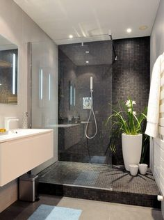 Shower with plants in the corner