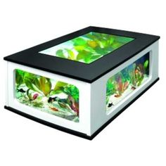 Une table aquarium Aquariums, Sunroom, Decoration, Inventions, Decorative Boxes, Tropical, Frame, Home Decor, Freshwater Aquarium