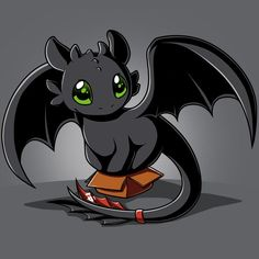 Toothless in a Box t-shirt How to Train Your Dragon TeeTurtle
