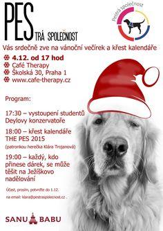 Pozvánka na vánoční večírek 5.12. od 17,00 v Café Therapy