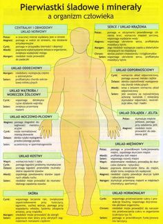 Health Facts, Health Diet, Health Fitness, Healthy Tips, Healthy Eating, Healthy Recipes, Alternative Medicine, Vitamins And Minerals, Herbalife