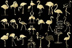 Gold Foil Flamingos Clip Art by FrankiesDaughtersDesign Gold Foil Print, Foil Prints, Illustrations, Graphic Illustration, Flamingo Clip Art, Line Art Vector, Web Design, Graphic Design, Party Banners