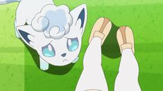 See more 'Pokémon Sun and Moon' images on Know Your Meme! Pokemon Gif, Pokemon Comics, Pokemon Memes, Alolan Vulpix, Pokemon Ash And Serena, Legend Of Zelda Memes, Video Game Anime, Pokemon Pictures, Softies