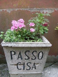 Passo Cisa