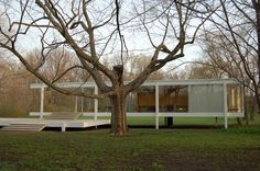 Ludwig Mies van der Rohe    The tree is such a nice compliment and contrast