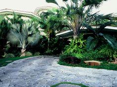 Panama Garden B + A | Raymond Jungles, Inc.