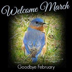 Goodbye February! Hello March!