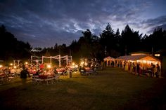 Awesome 55+ Awesome Redwood Forest Wedding Venues For Perfect Wedding  https://oosile.com/55-awesome-redwood-forest-wedding-venues-for-perfect-wedding-8528
