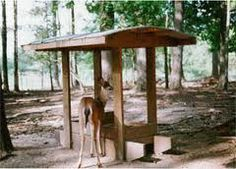 Tips on Feeding Deer in the Winter by Kansas City News As the bitter cold winter months approach here in good old Kansas City, some of u. Deer Feeder Plans, Deer Feeder Diy, Bird Feeders, Deer Hunting Tips, Bow Hunting, Hunting Stuff, Hunting Cabin, Deer Food, Goat Barn