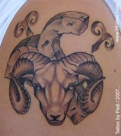 Aries Tattoos | InkDoneRight  Aries Tattoos - Aries was a ram with golden fleece that was hunted by Jason and the Argonauts. The ram was first mentioned in a myth about a woman named Nephele and her children. Nephele begged Mercury to protect her children from her…