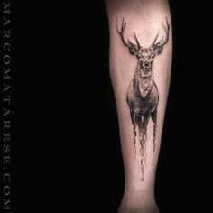Engraving style black ink leg tattoo of deer