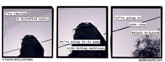 I used to want to plant bombs, the night of the prom. - e horne and j comeau a softer world