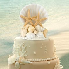 Bring the ocean inside with this coastal elegance seashell wedding cake topper. This stunning cake topper is perfect for a destination wedding or a beach wedding. This cake topper will also become a wonderful keepsake after the wedding is over Starfish Cake, Seashell Cake, Seashell Wedding, Beach Themed Cakes, Beach Cakes, Themed Wedding Cakes, Themed Weddings, Cake Wedding, Wedding Favors