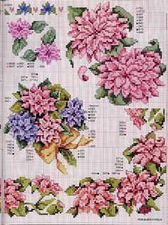 Gallery.ru / Фото #5 - Ботаника-цветы - irislena