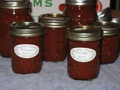 Spicy Homemade Ketchup (puree everything.  no peeling/seeding/coring)