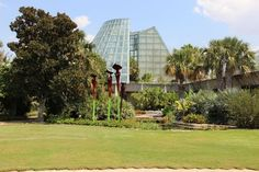 Thinking of warmer days....San Antonio Botanical Garden. San Antonio, Texas. #sanantonio #texas #travel